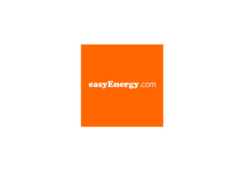 EasyEnergy Transparent Logo Being On Point Ruth Saunders